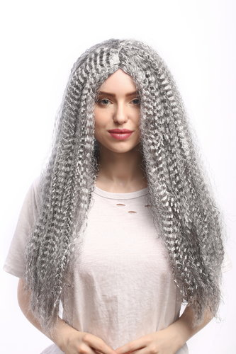 Lady Party Wig Halloween long kinked grey hair straight middle parting Vampire Witch Old Hippy 23""