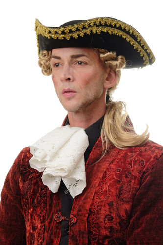 Man Gents Party Wig Halloween Fancy Dress Baroque noble aristocrat lord curls long ponytail blond