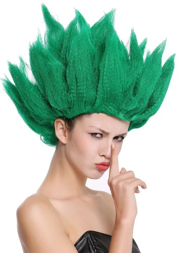 Lady Gents Man Party Wig Fancy Dress Demo Flower Wood Fairy Pixie green teased high 91062-PC18