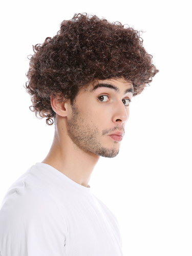 Wig Men Women Halloween Carnival Fool Foolish looking frizzy curls curled short mop afro brown
